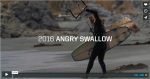 angry swallow 2016