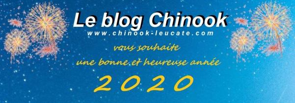 Blog bonne année 2020